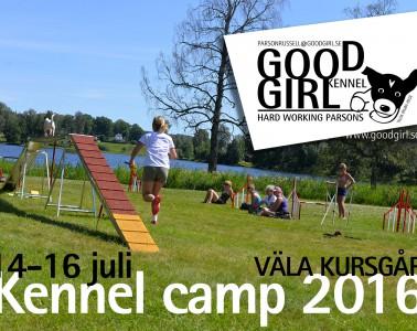 kennelcamp_2016